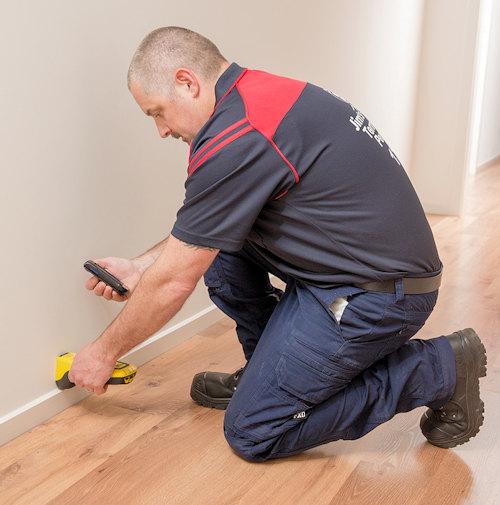 Termite inspection cost Brisbane