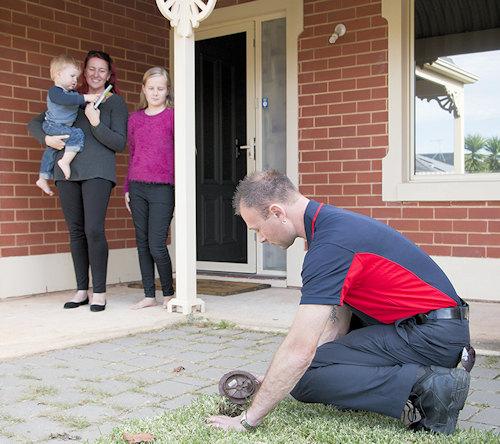 Termite treatment cost Brisbane