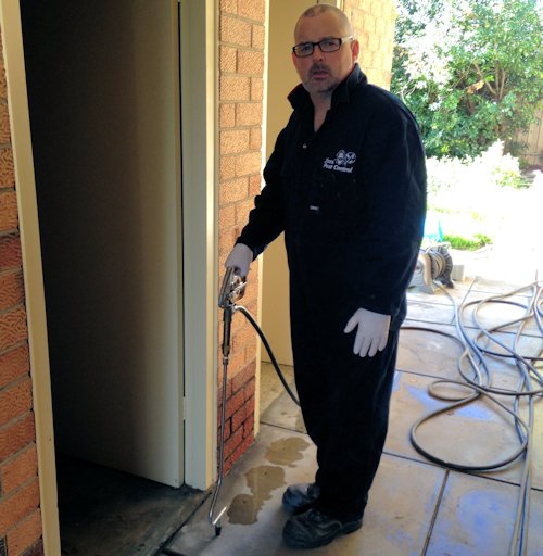 Termite Barrier Cost