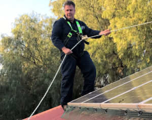 Bird Proofing Solar Panels Gold Coast